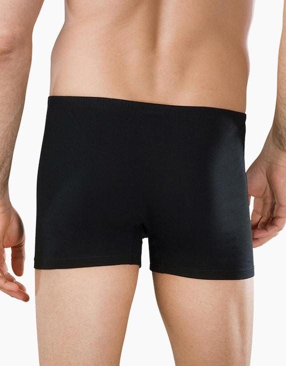Schiesser Herren Shorts 2er Pack - Essentials | ADLER Mode Onlineshop