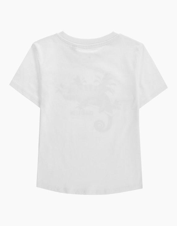 "Tom Tailor Mini Boys T-Shirt ""Chamäleon"" | ADLER Mode Onlineshop"