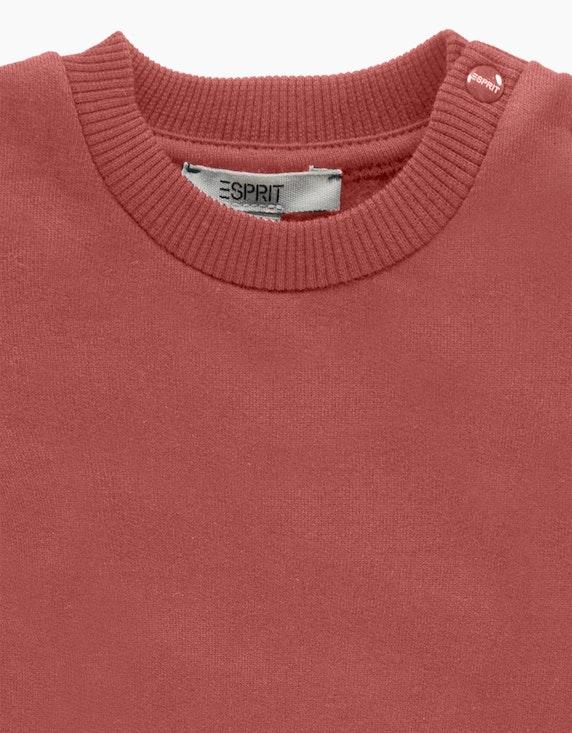 Esprit Baby Girls Sweatshirt mit Volantsaum | ADLER Mode Onlineshop